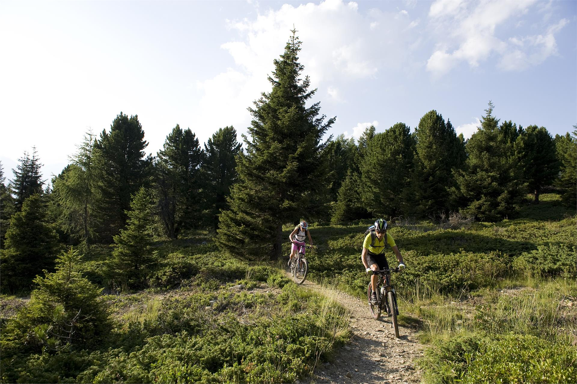 Tour in mountain bike Uphill Malga di Marzon e Fontana Trail