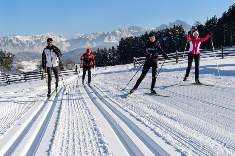 Training track Pfösl
