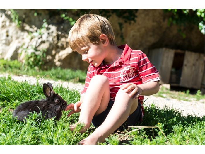 Silas bei unseren Kaninchen