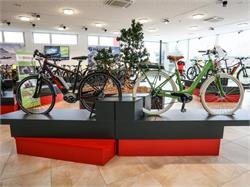 bycicle rental Sanvit