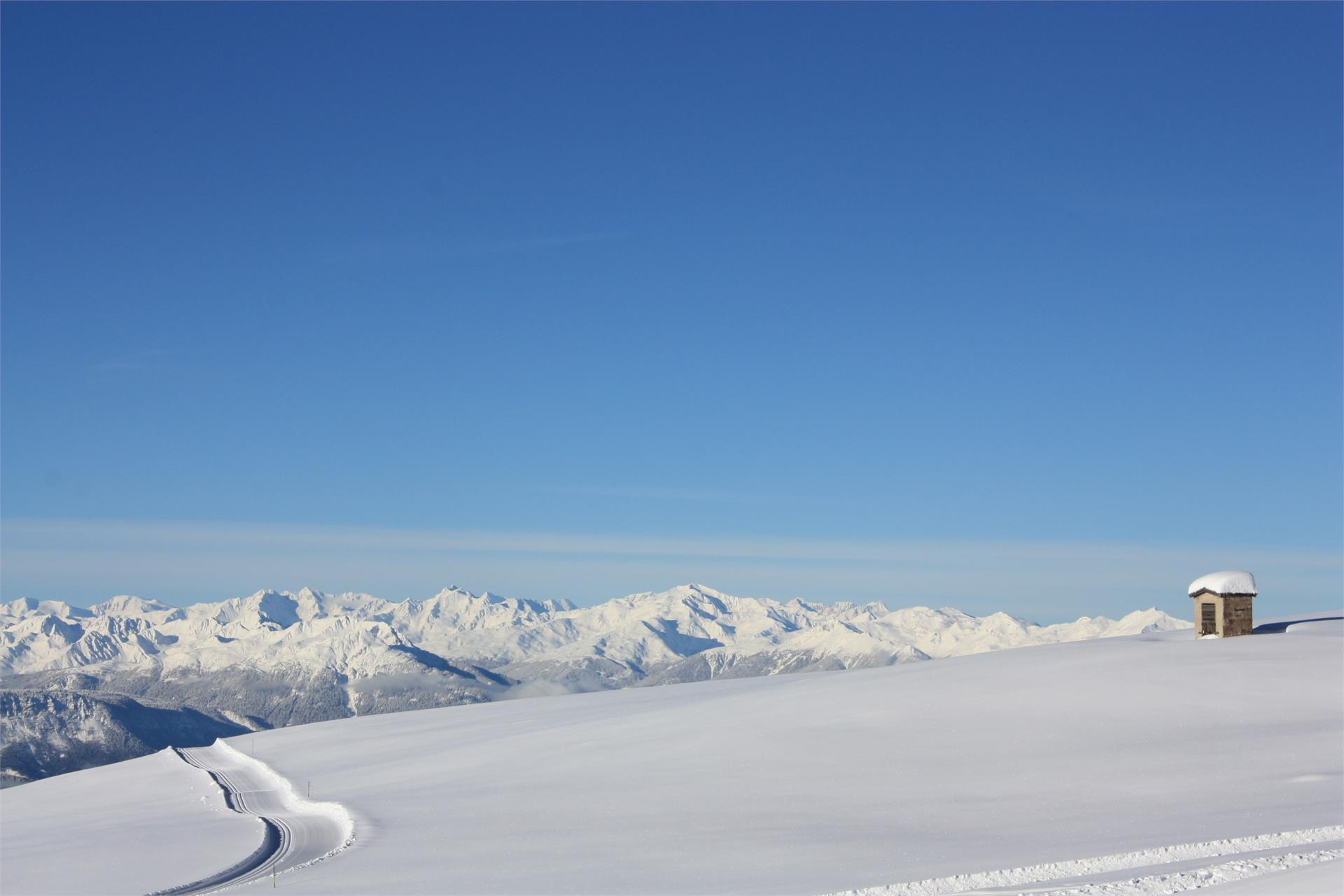 Rittner Horn High-Altitude Cross Country Skiing Trail
