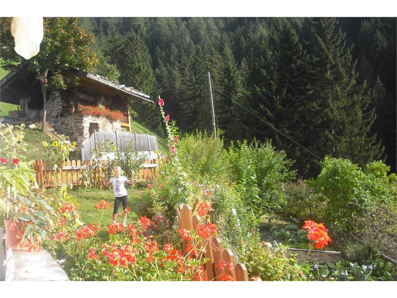Garten und Backofen auf dem Gogerer Hof