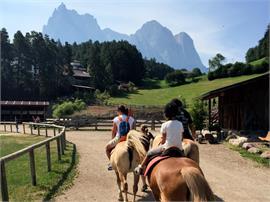 Un universo in fattoria: Tutto intorno ai cavalli