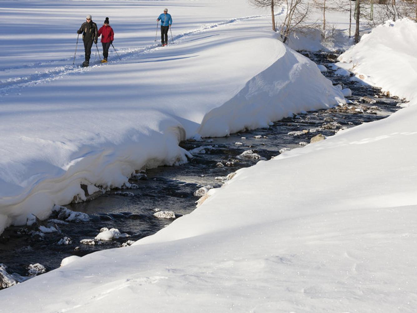 Schneeschuhwanderung zur Larcherberger Säge