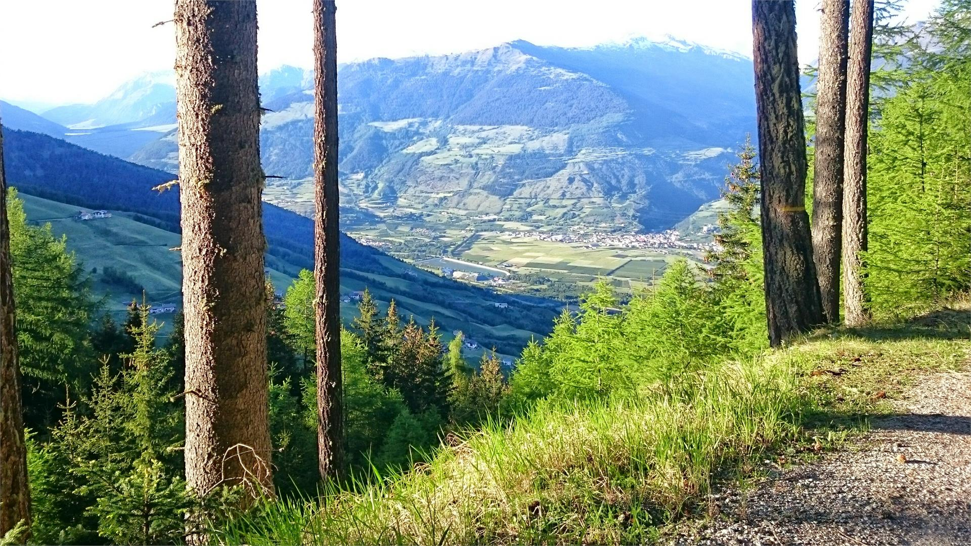 Blick in den oberen Vinschgau