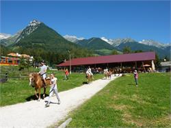 Herbert's Riding stable