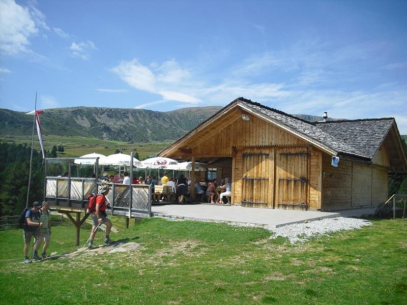 """Sentiero del """"Pino mugo"""" sul Alpe di Villandro"""