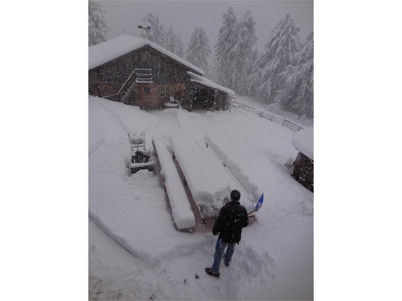 ...es schneit....
