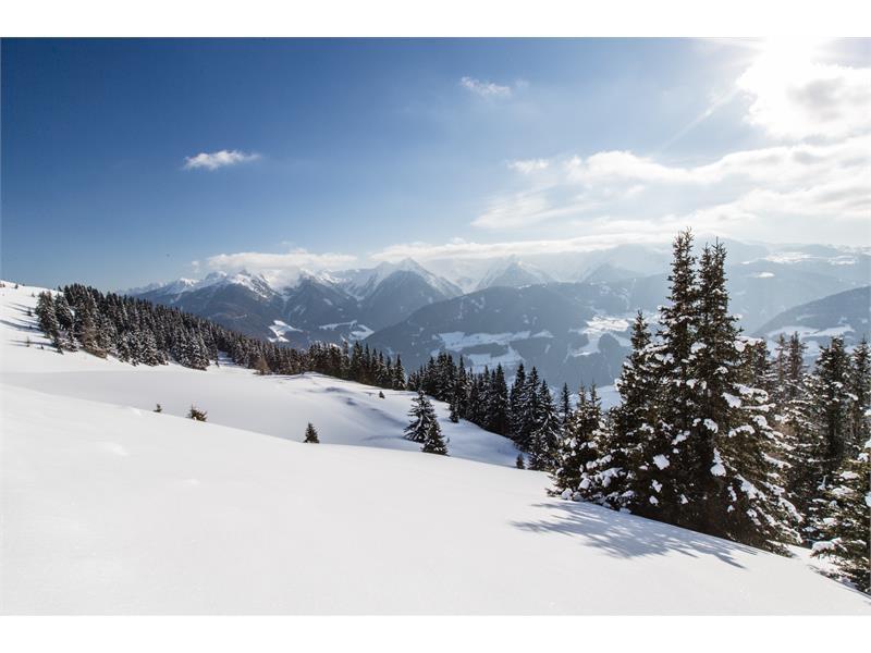 Rosskopf Winterwandern zur Kuhalm