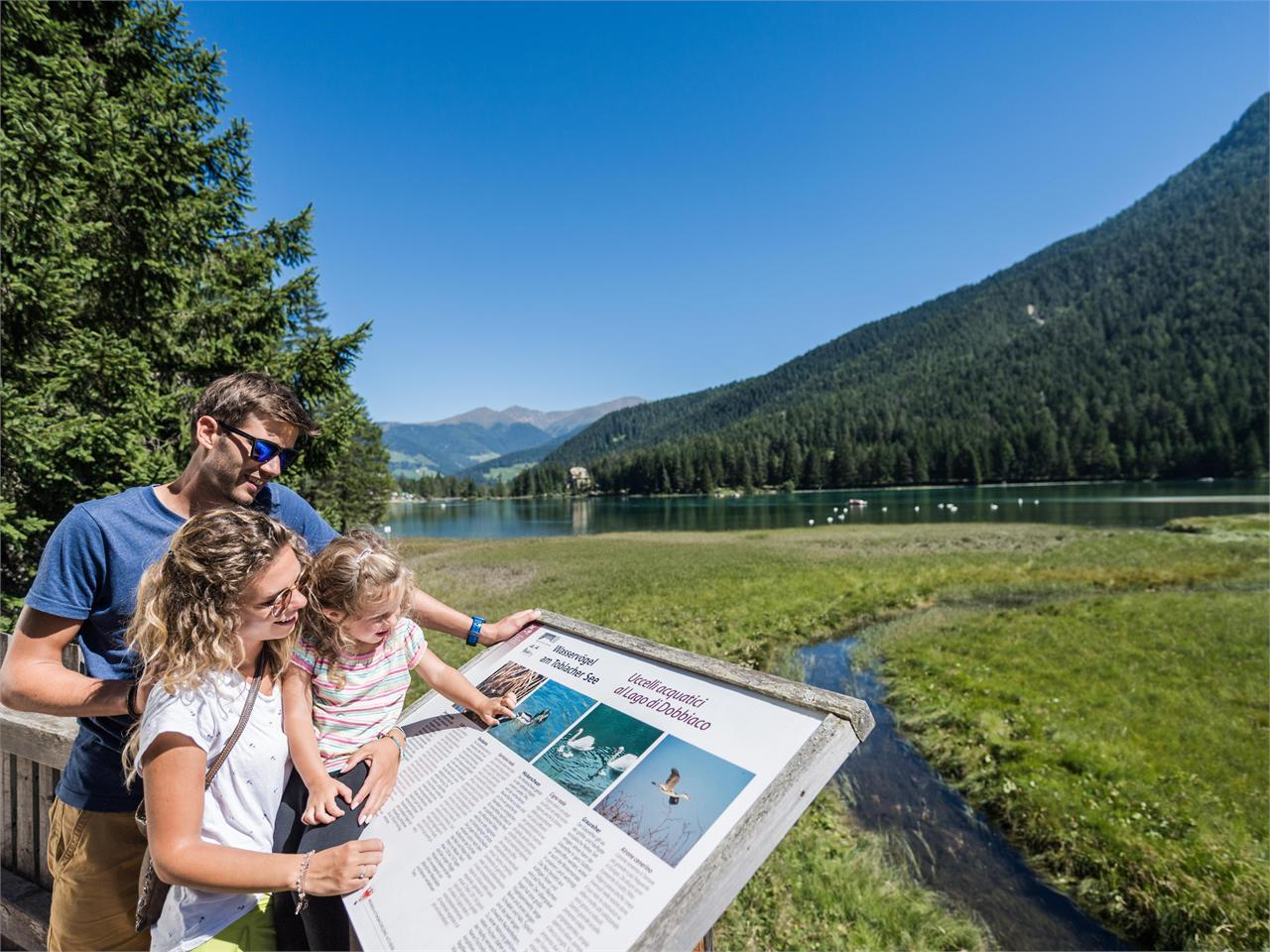 Family walking tour: Neutoblach- Lake of Toblach- Nature Educational Trail - Dobbiaco/Toblach