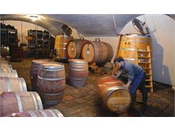 Winery Klosterhof