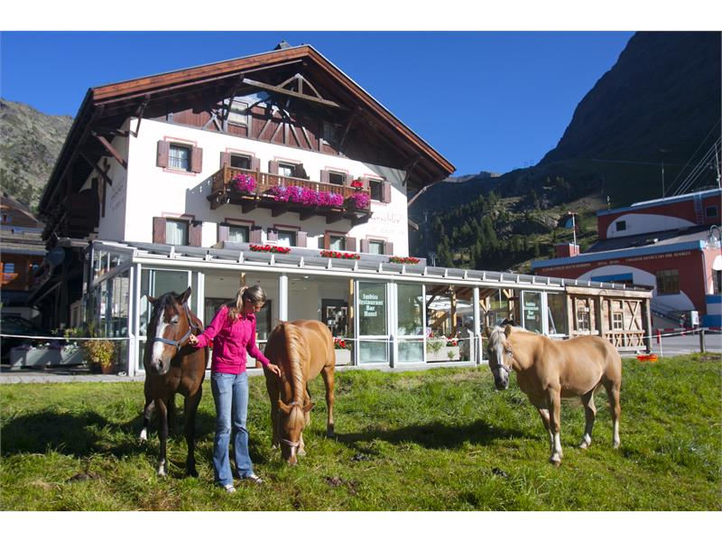 Piccolo Hotel Gurschler, Cavalli, Maneggio