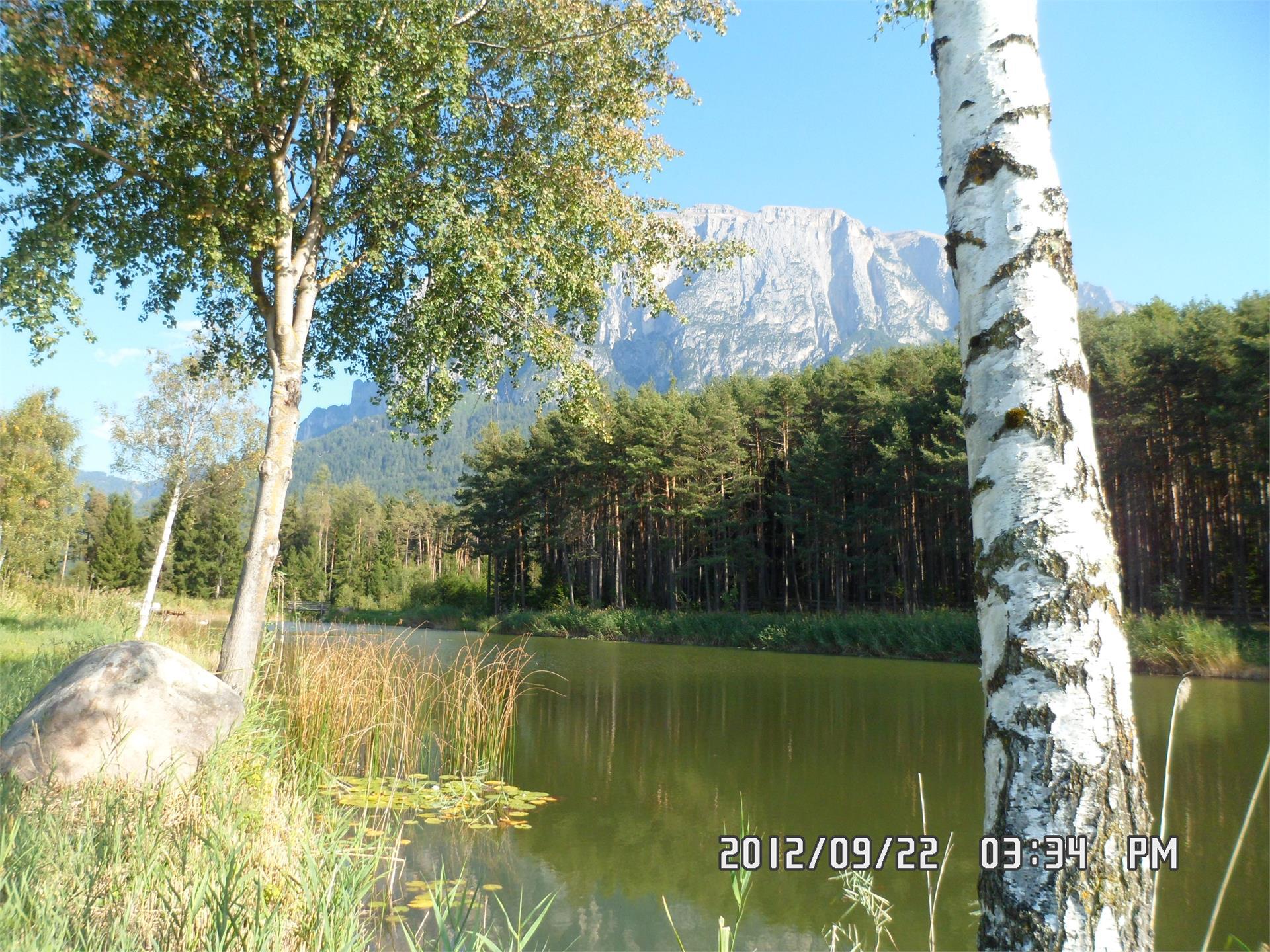 Salmsein Biohof- Völs am Schlern