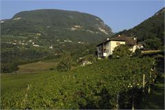 Weinhof Brunnenhof