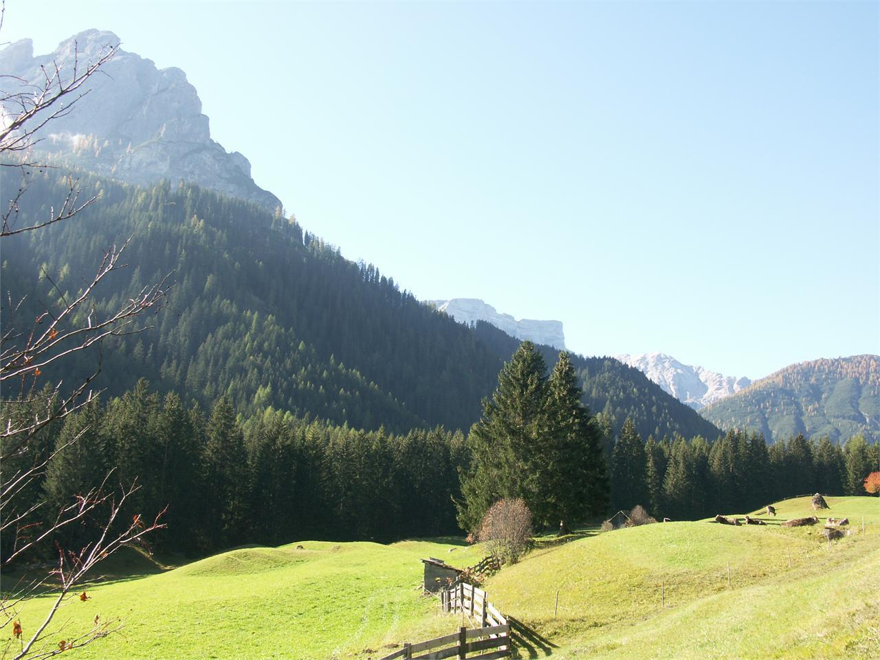 Family hiking tour - Monte di Braies/Pragser Berg
