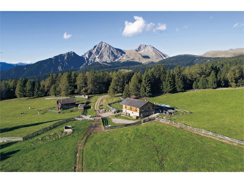 Wurzer Alm Alp Inn in Hafling/Avelengo