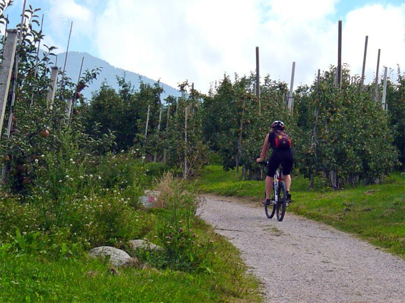 Radfahren in Natz-Schabs