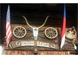 Walter's Horses Ranch - Riding stable