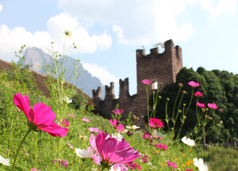 Rovine di Castel Rovereto
