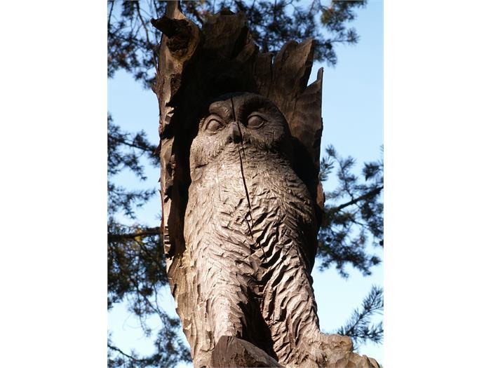 Creature del bosco...