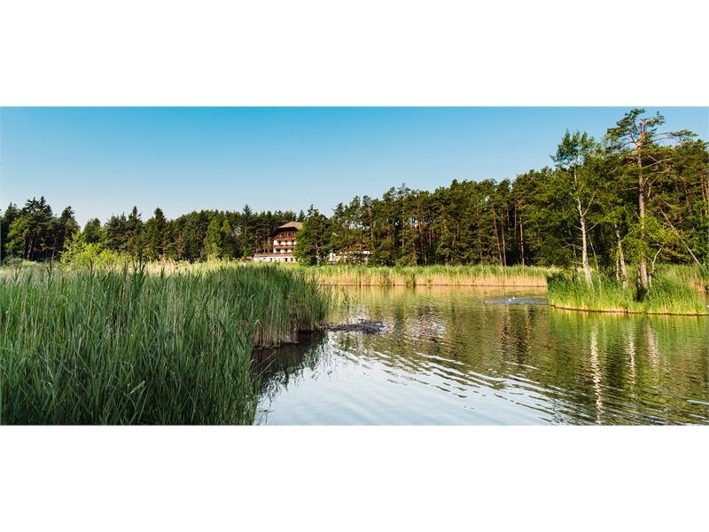 Hotel Waldsee im Naturpark Schlern-Rosengarten