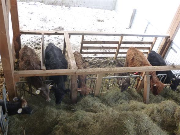 unsere Landwirtschaft
