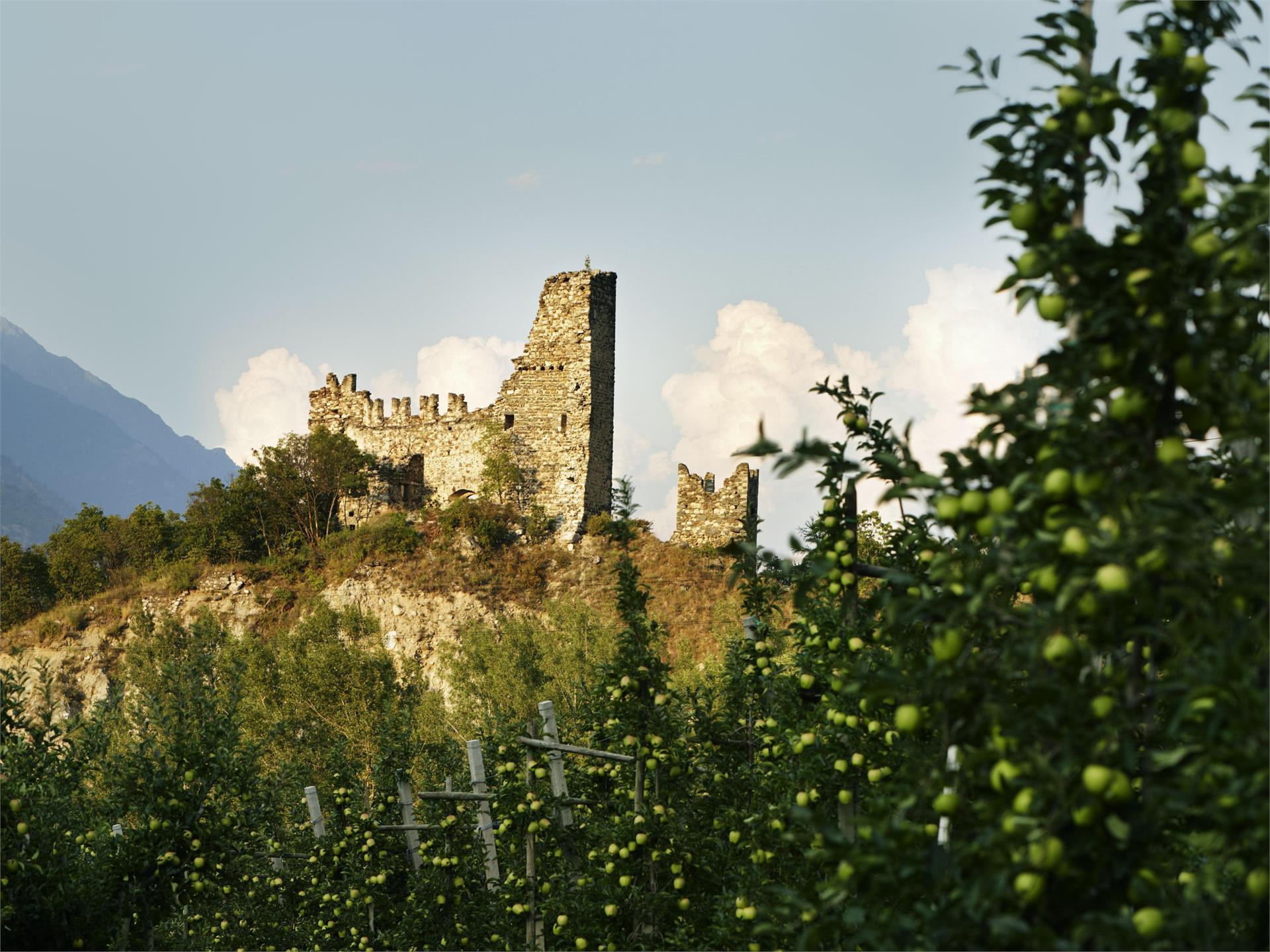 Burg Untermontani (Ruine)