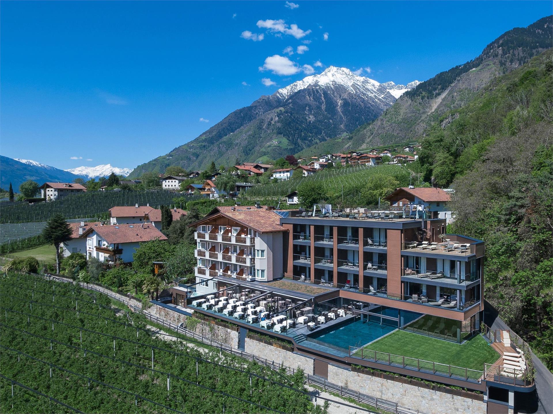 Avidea Hotel
