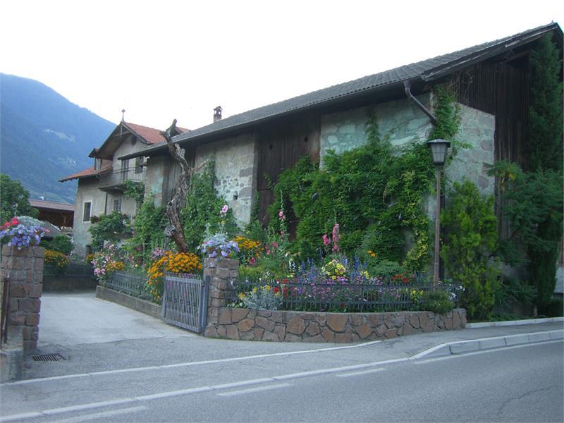 Wohlaufhof