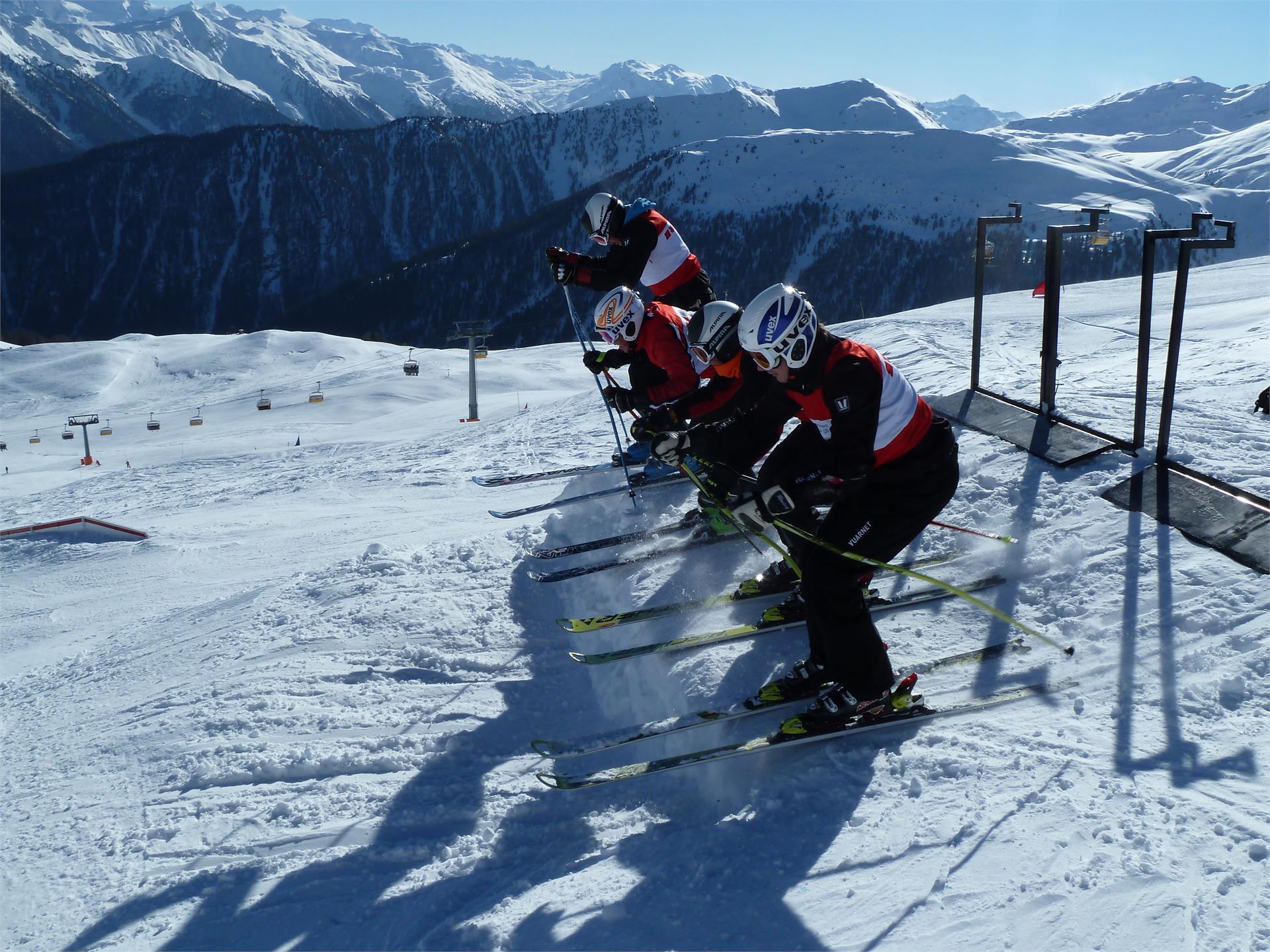 Ski-Cross Piste