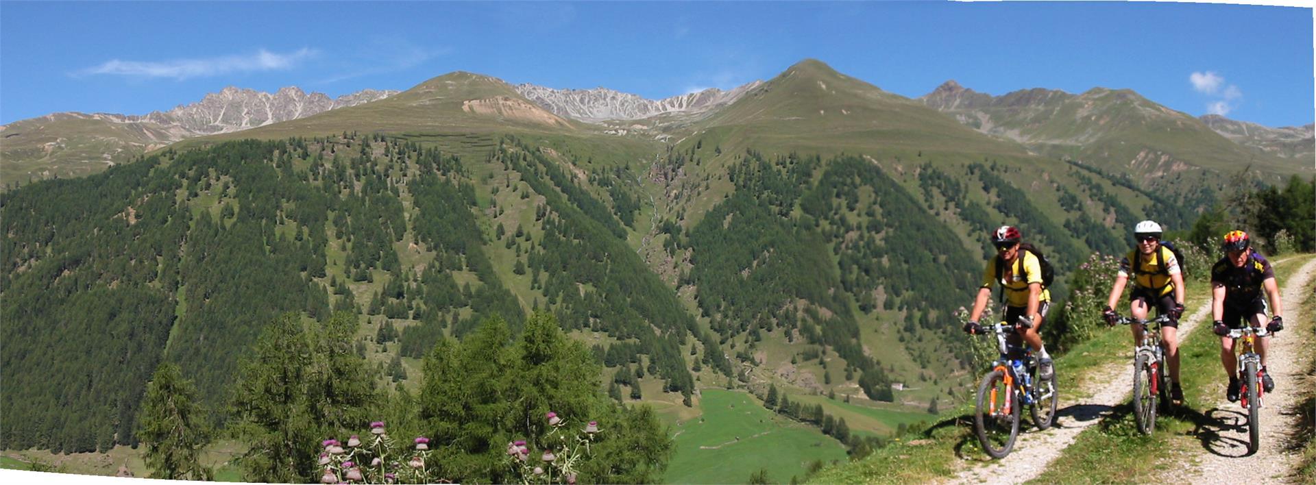 Aussicht auf die Bergwelt