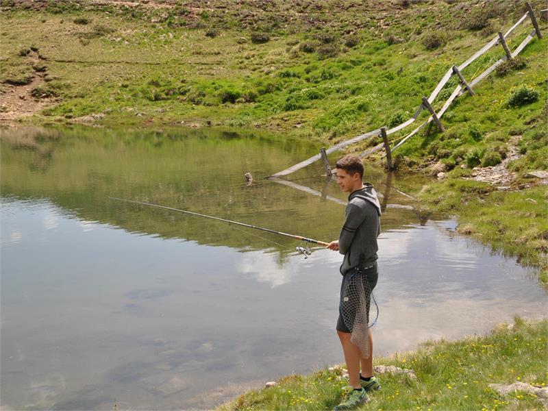 Fishing in the lake Pfaffensee