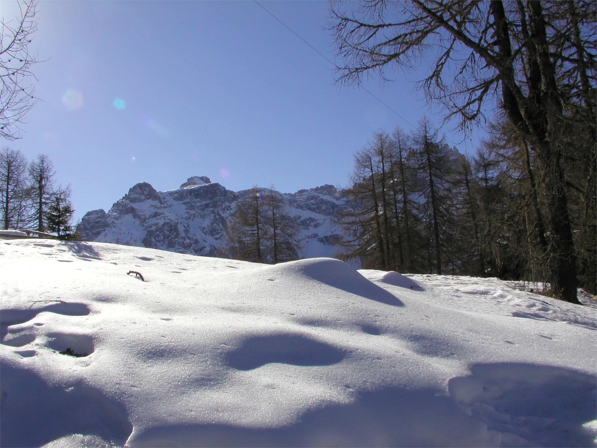 Escursione invernale - Moso - Passo Monte Croce - Malga Coltrondo