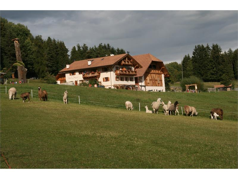 Kaserhof in Oberbozen am Ritten