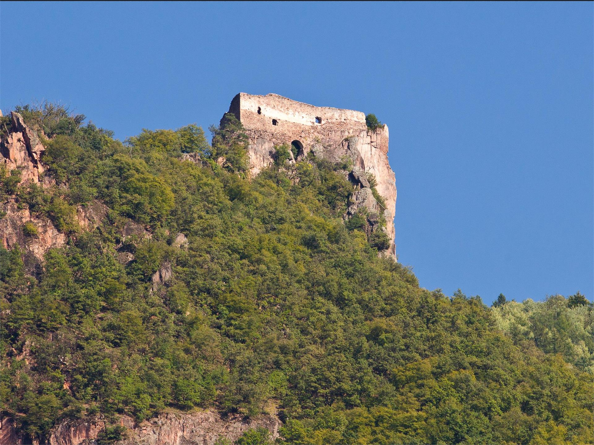 Greifenstein Castle Ruin above Settequerce