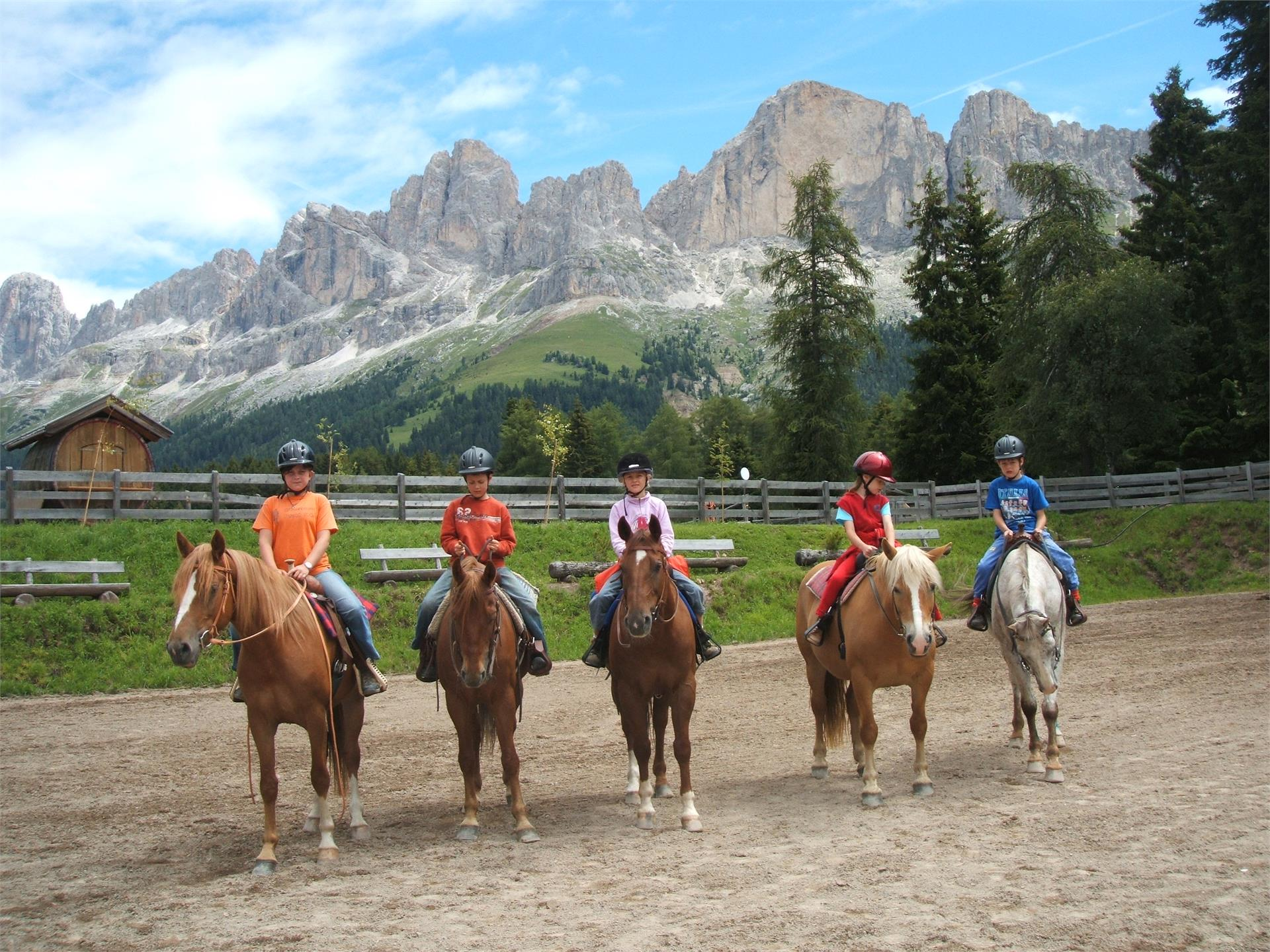 Horsecenter Malga Angerle