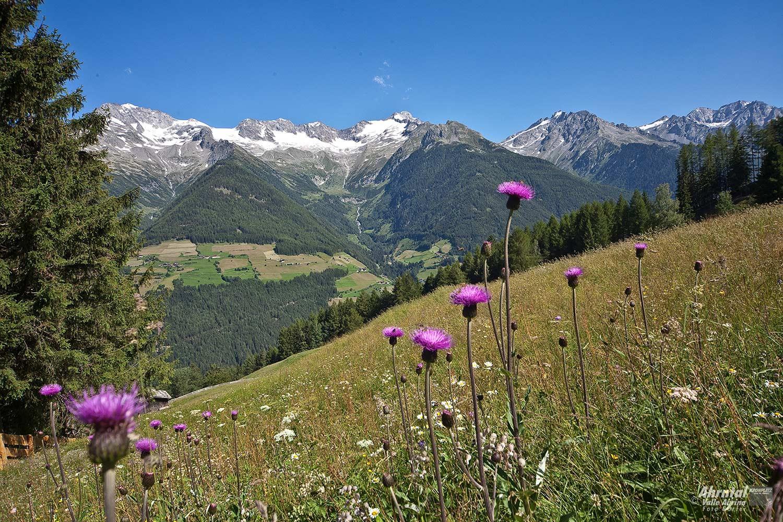 Bergtour zum Schaufler