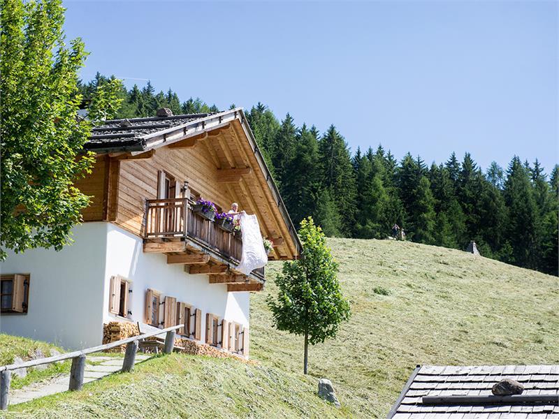 The Alpine Hotel Taser