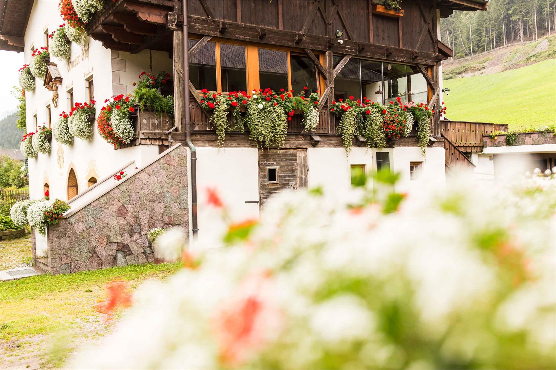 Hueberhof - summer