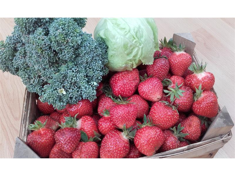 strawberries and other biological products