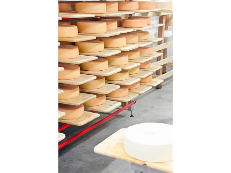 Seppner Farm Dairy