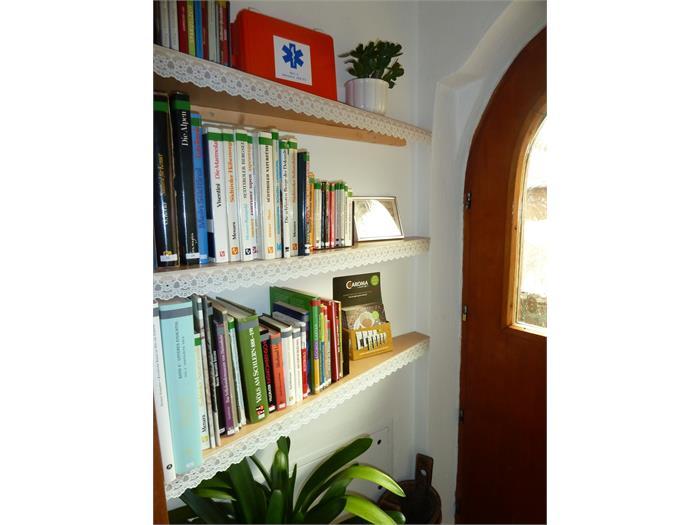 homelibrary- house Albert Haselrieder, Fié allo Sciliar