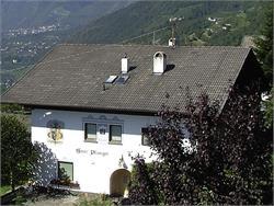 Residence Plunger