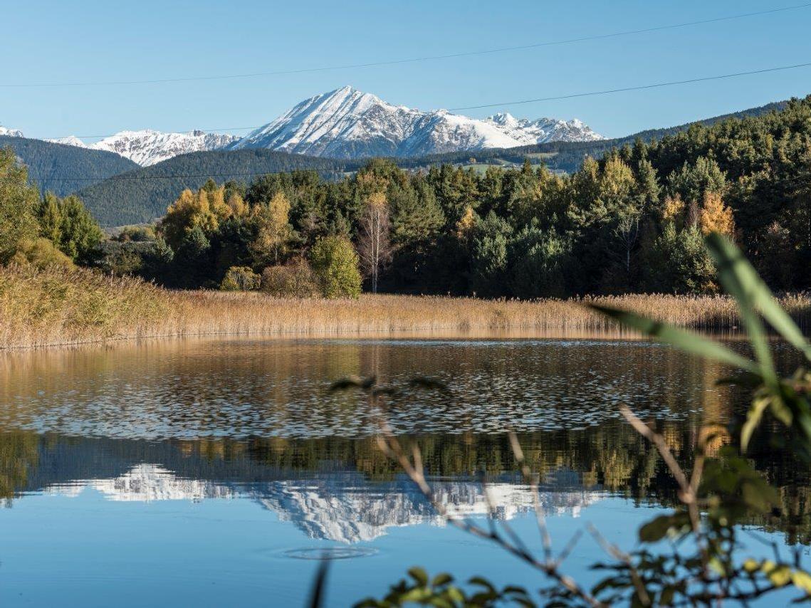Biotop Raiermoos im Herbst
