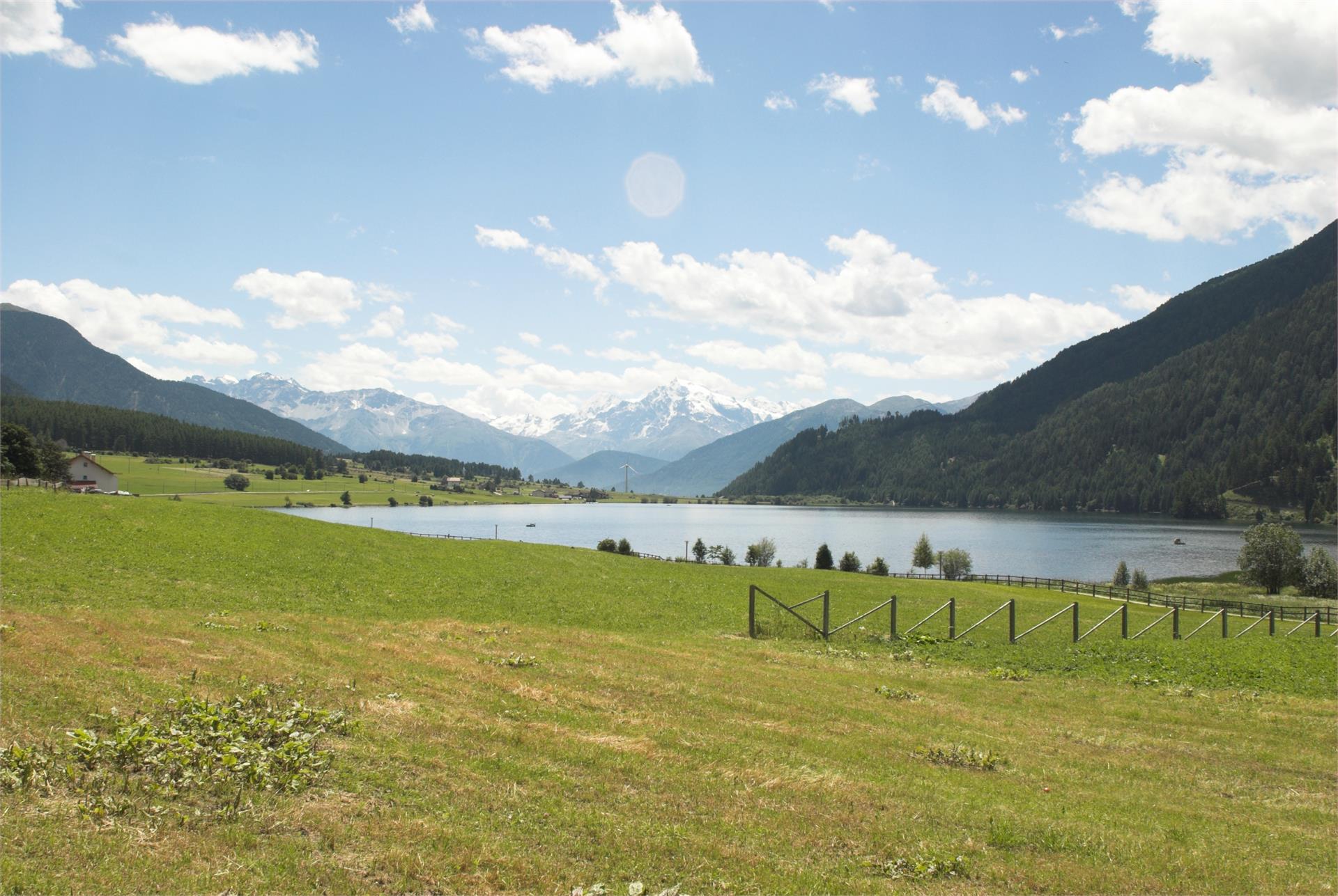 Der Natursee in der Ferienregion Reschenpass