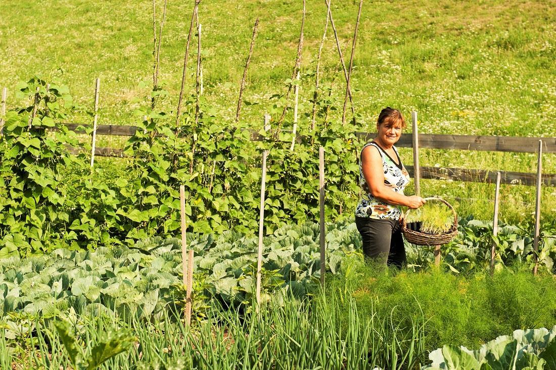 Annemarie bei der Ernte im Garten