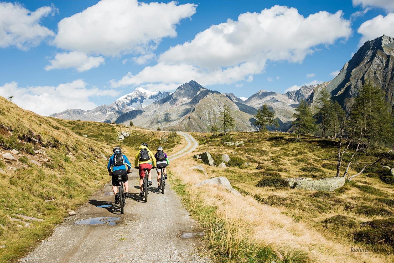 Kreaktiv Fahrrad- und Mountainbikeverleih - Luttach