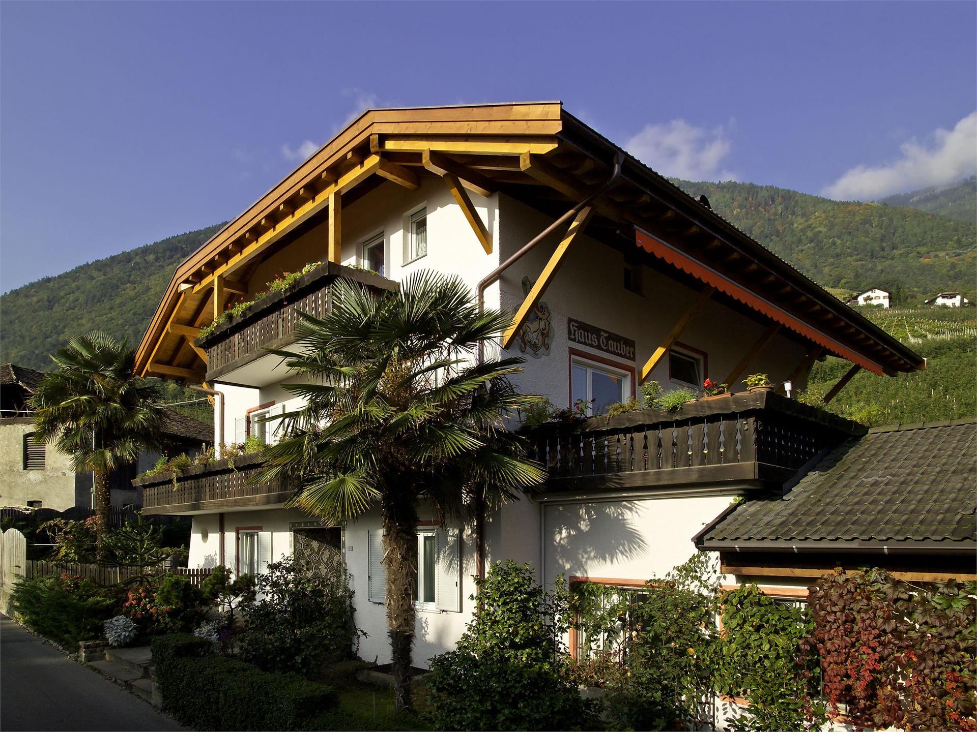 Haus Tauber