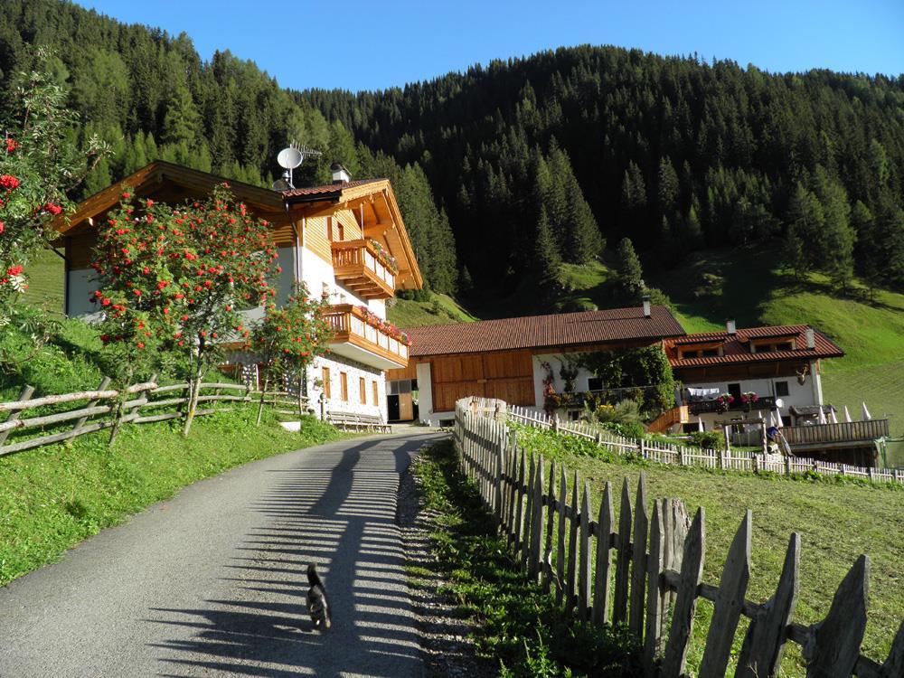 Ungererhof