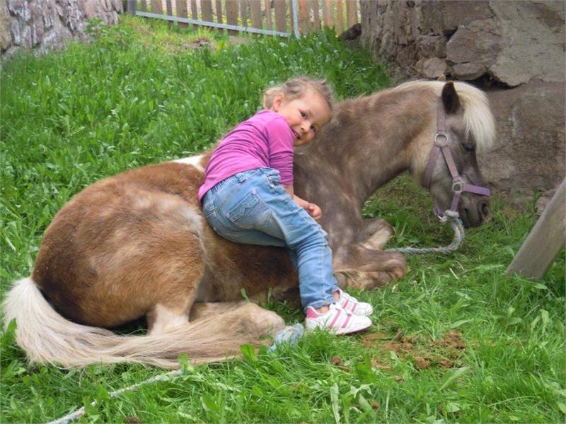 Per i più piccoli ci sono i Pony